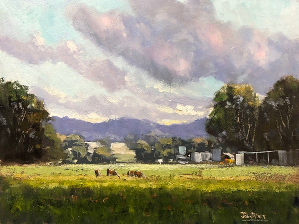 Image of Late Afternoon Sunshine, Mudgee