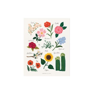 Image of PETITE AFFICHE HERBIER, RIFLE PAPER CO.
