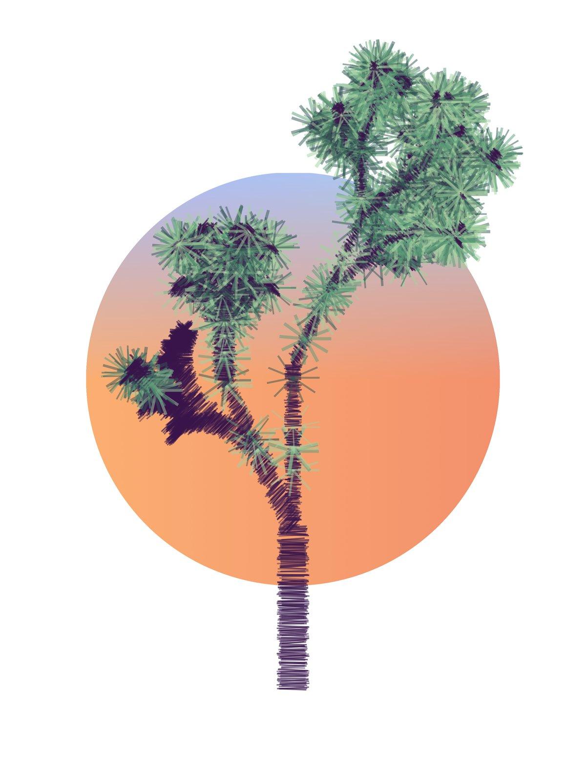 Image of Joshua Tree