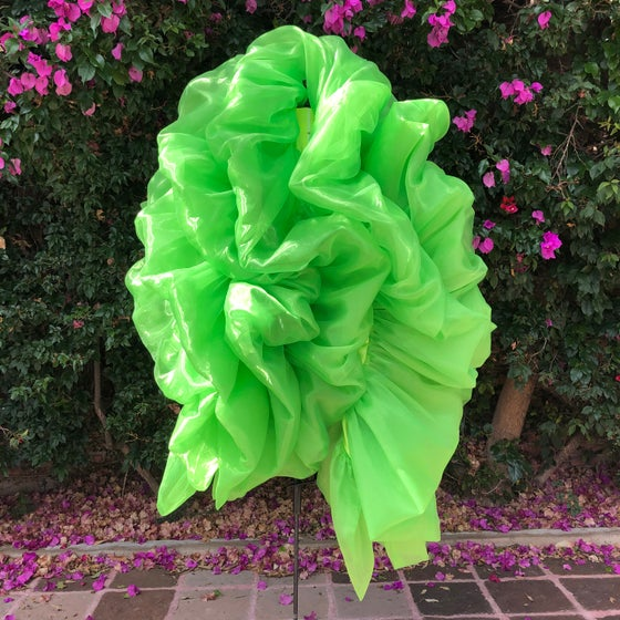 Image of The day the boa turned day glo