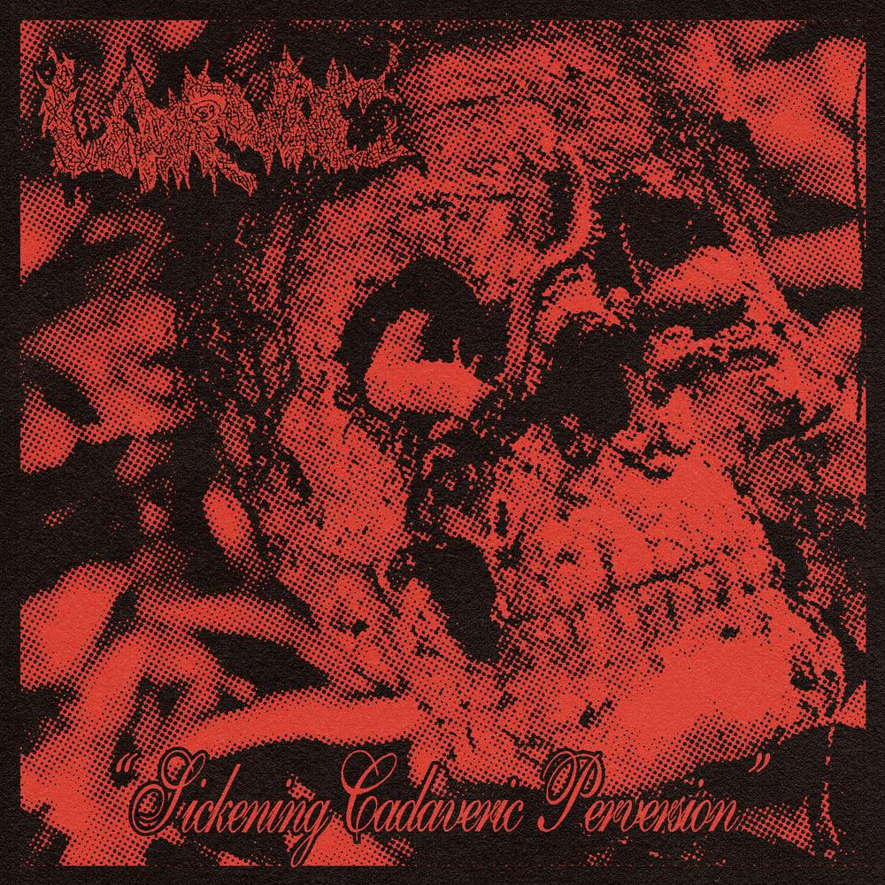 "Image of Larvae ""Sickening Cadaveric Perversion"" 7"" Single + Sticker"