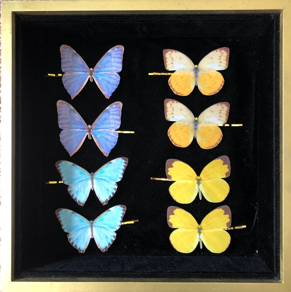 Image of NEW! Silk Butterfly Hair Pins - blue & yellow