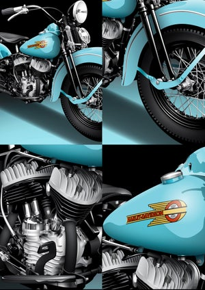 Image of Harley 45