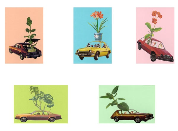 Image of Groovy plant lovers. Note cards.