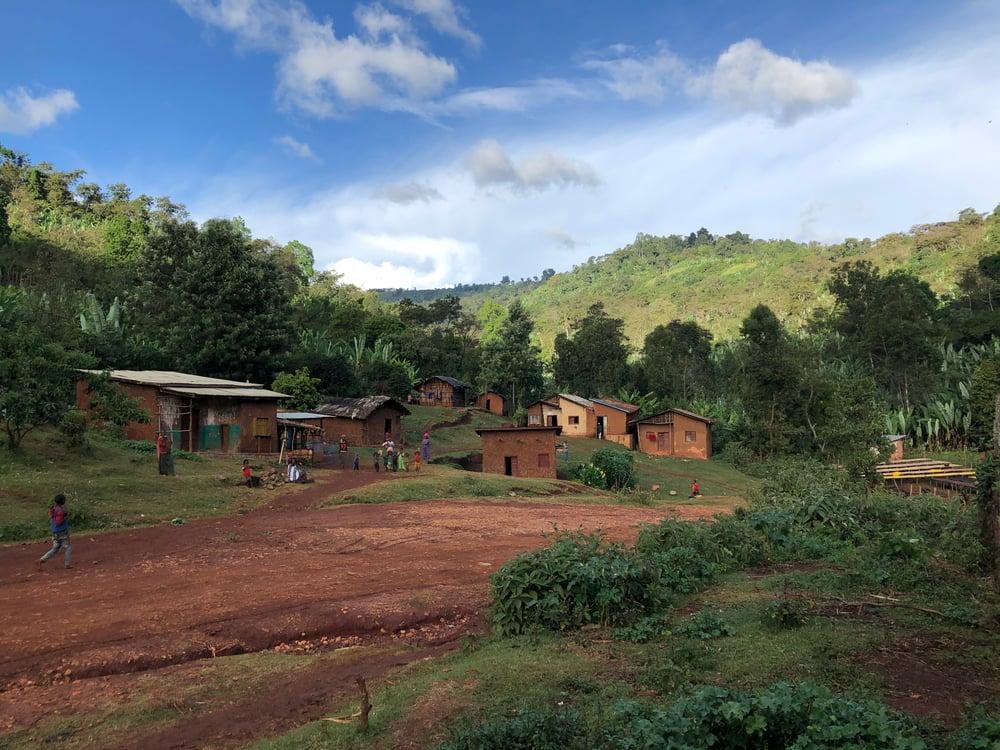 Image of Ethiopia, Kurume & Welicho, Washed, 250g