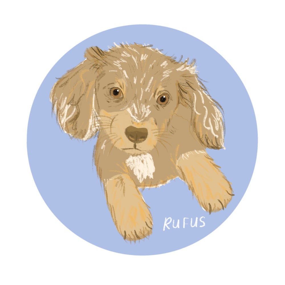 Image of Custom pet portrait (A4)