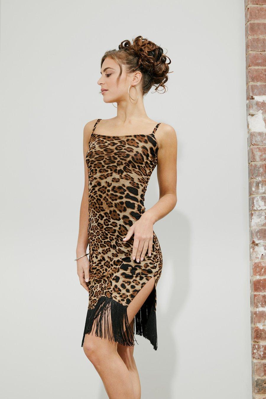 Image of Mini Split Fringe Dress H10116 Animal Dancewear latin ballroom