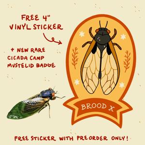 Cicada Shirt *PREORDER* (CM) natural