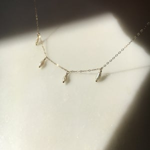 Image of aril necklace