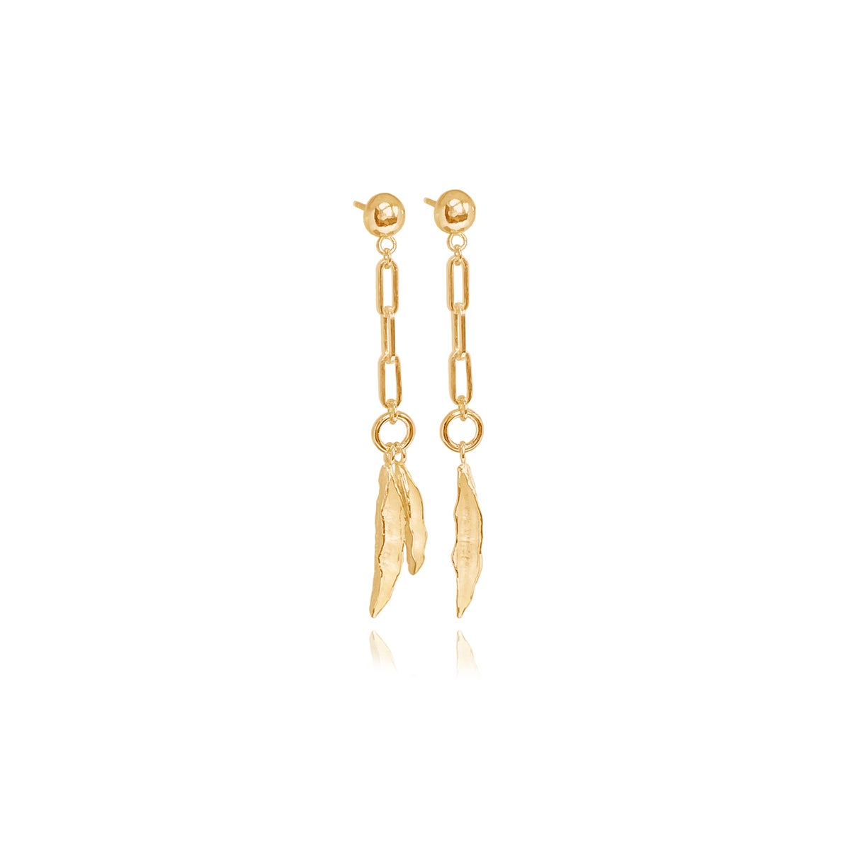 Image of Gold chain link & seedpod studs