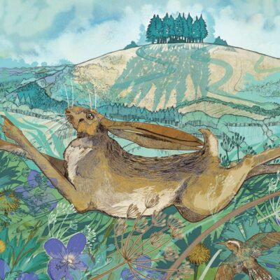 Image of MAY HILL HARE GREETINGS CARD