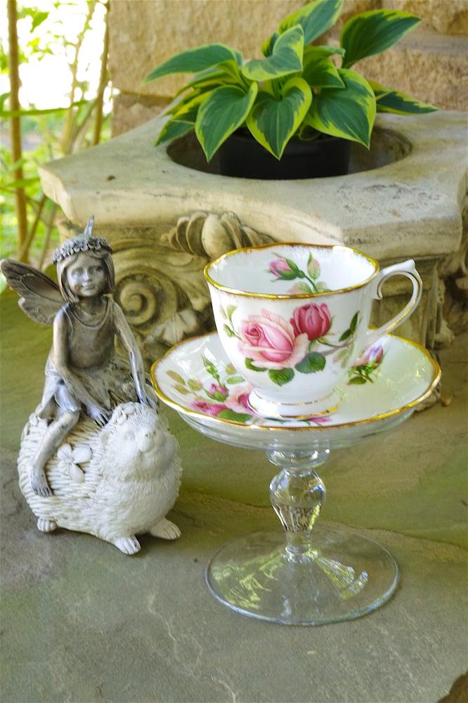 Image of Fairy Rose