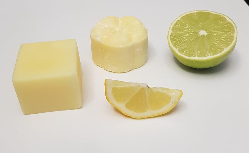Image of Lemon, Lime & Bergamot Shampoo & Conditioner BarBar
