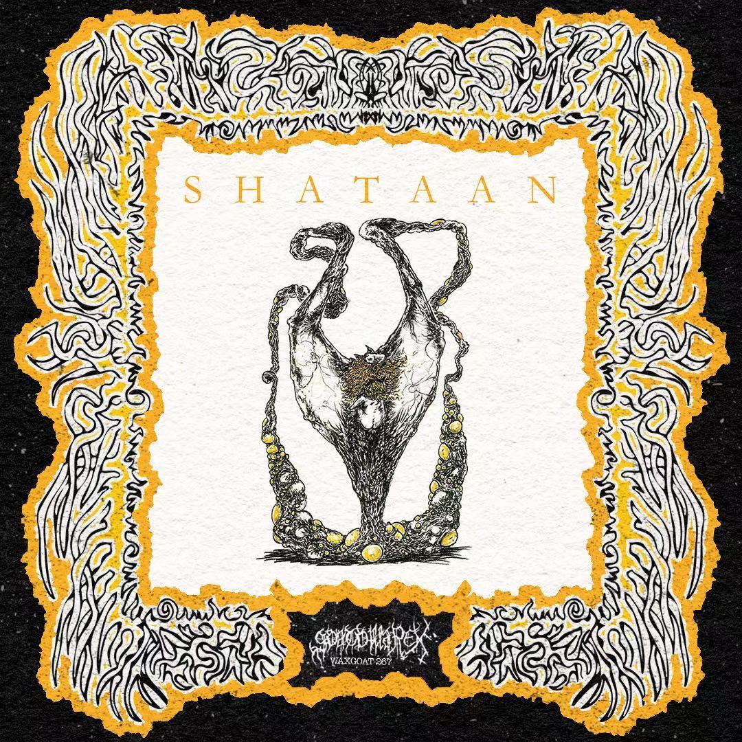 "WAXGOAT266 Shataan (USA) - Relic - 12"""