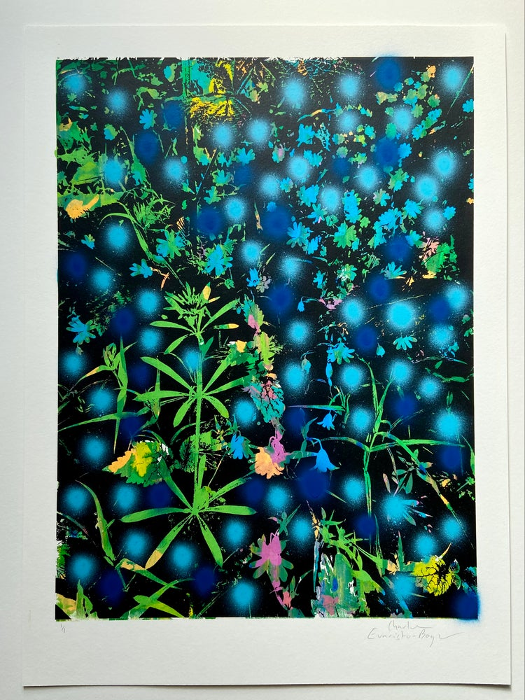 Image of Late Spring #3 (Cleavers and Colour Drops)