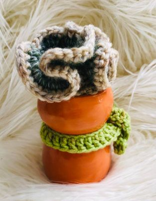 Image of Foxy the Crocheted Succulent