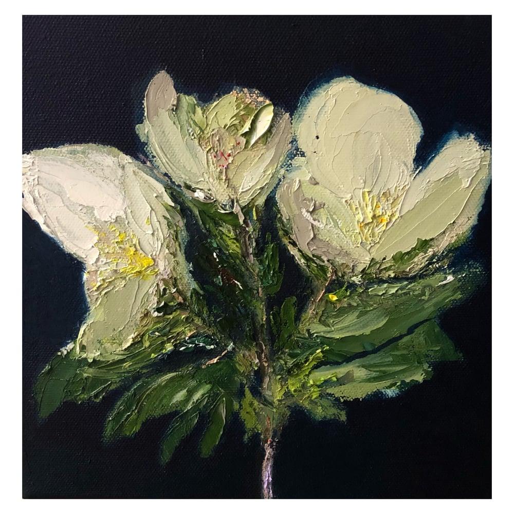 Image of 'Magnolia' 2021 Oil on canvas