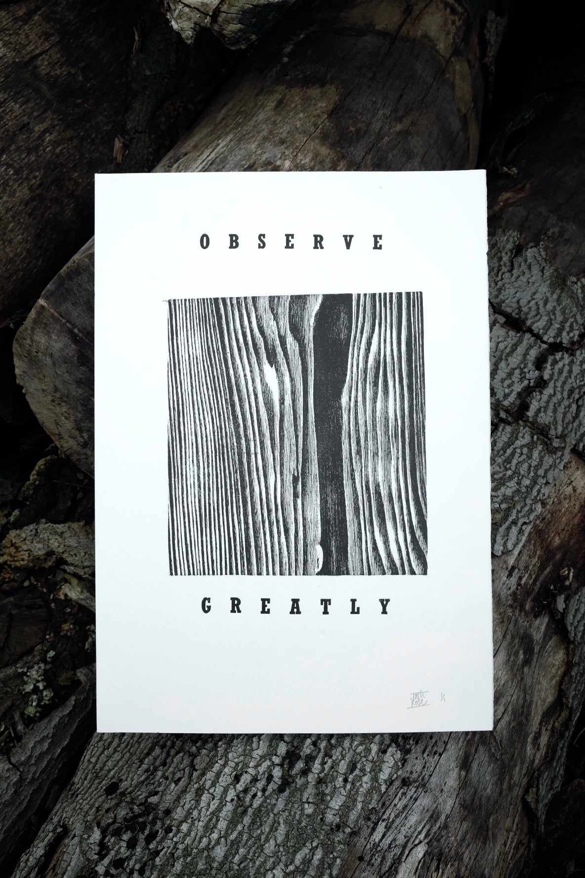 Image of OBSERVE GREATLY - 2
