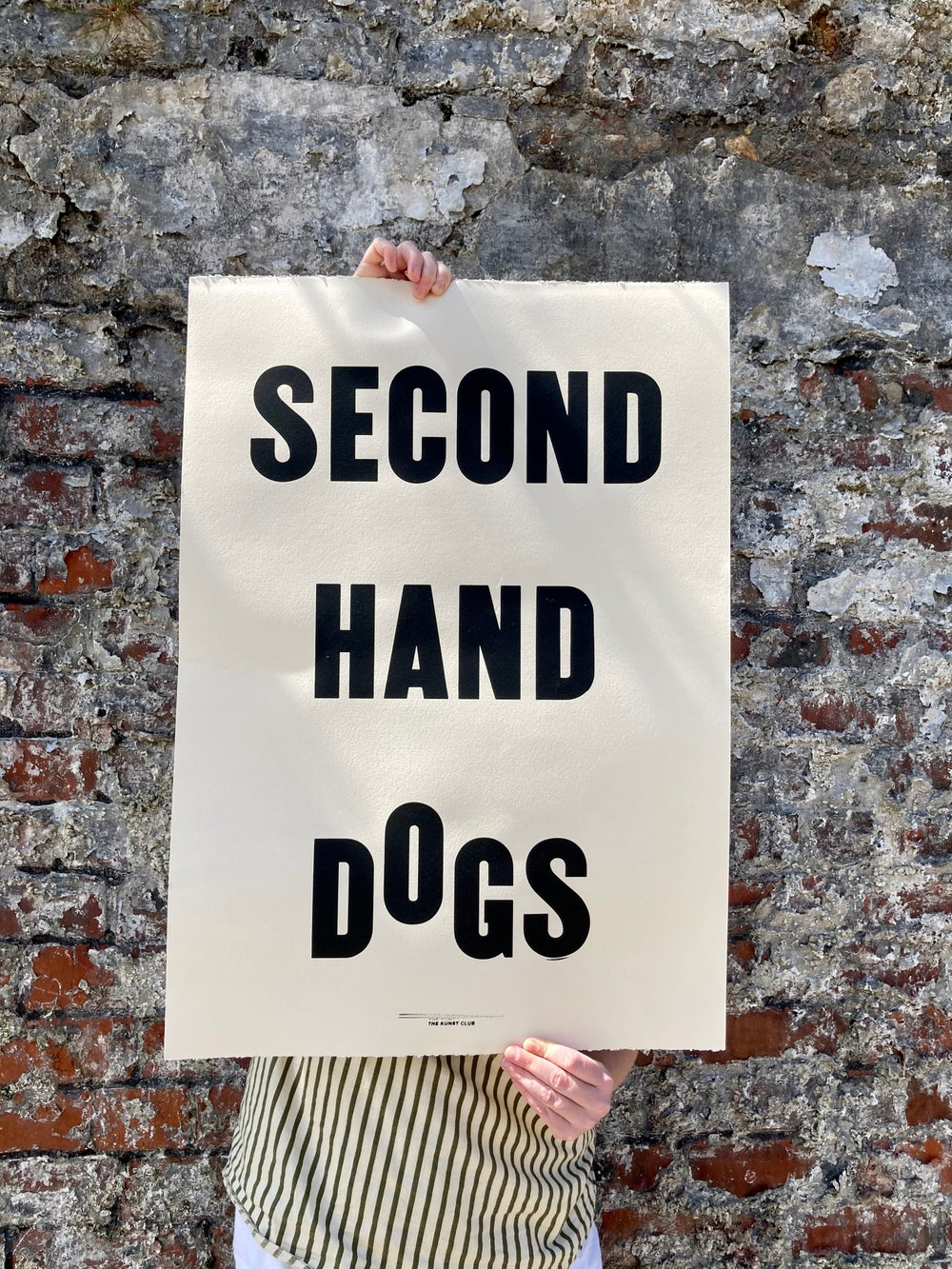 Image of Second Hand Dogs