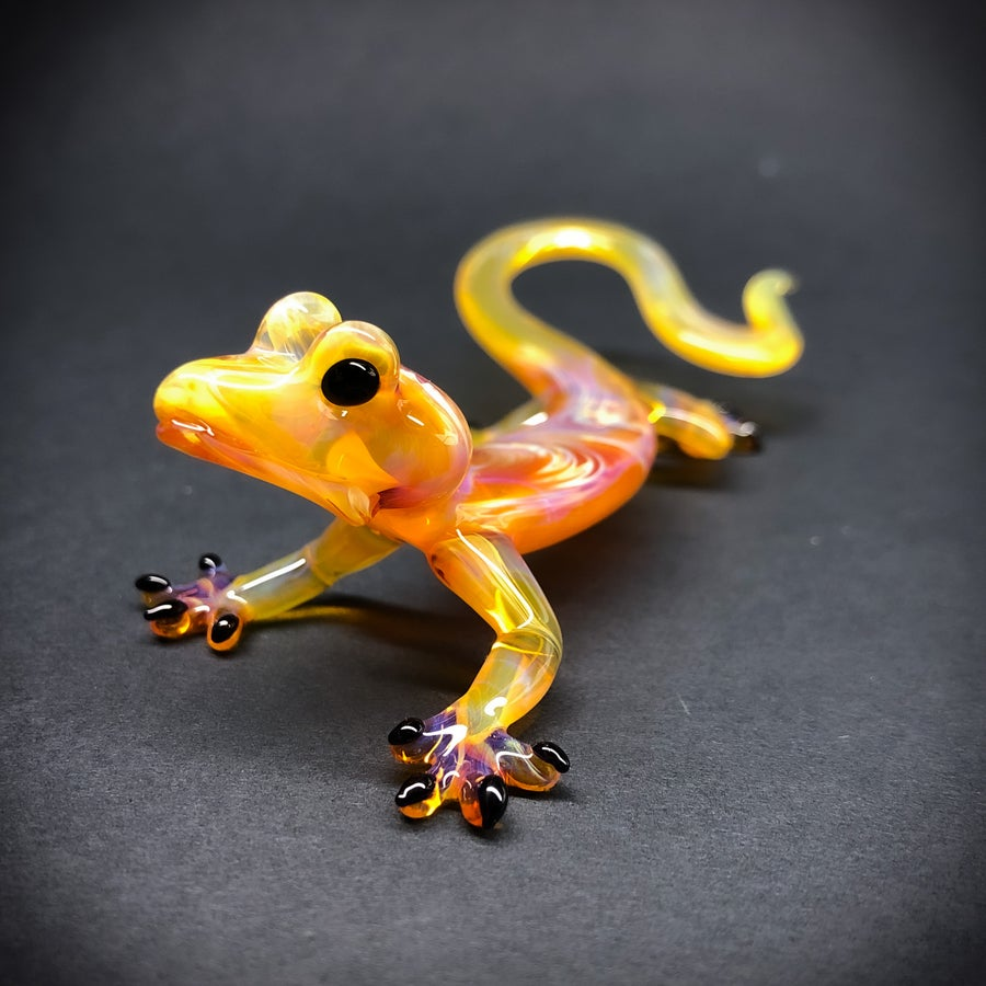 Image of Amber purple gecko