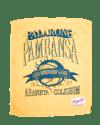 Palarong Pambansa Rally Towel