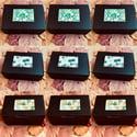 box of 4 petite soaps with bush balm mint