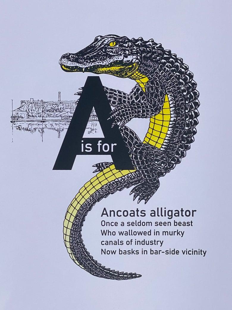 Image of Ancoats Alligator