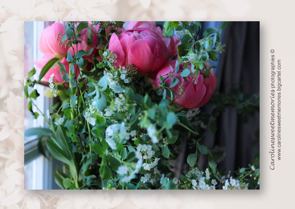Image of Les pivoines roses | carte postale