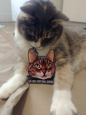 Image of Cats Rule Everything Around Me