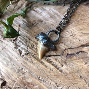 Image of Copper Sharks Tooth Necklace