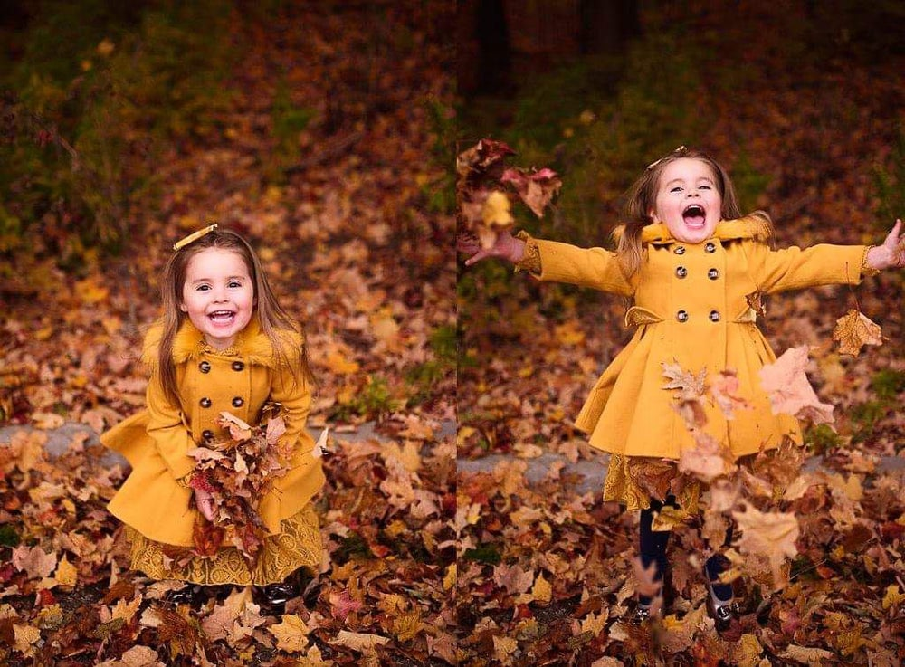 Image of FALL MINIS - OCTOBER 16th &  17th