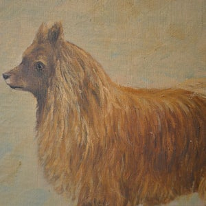 Image of Early 20th Century, Belgian, Naive Portrait of a Dog