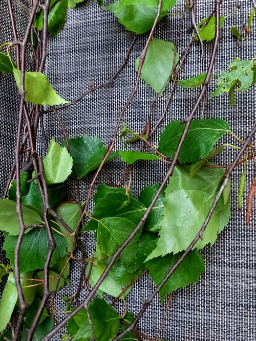 Image of Box of willow, hazel and birch branches and leaves