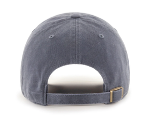 Image of DTWD Shrimp - Retro - Dad hat
