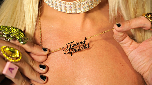 Image of Friend of the Pod necklace