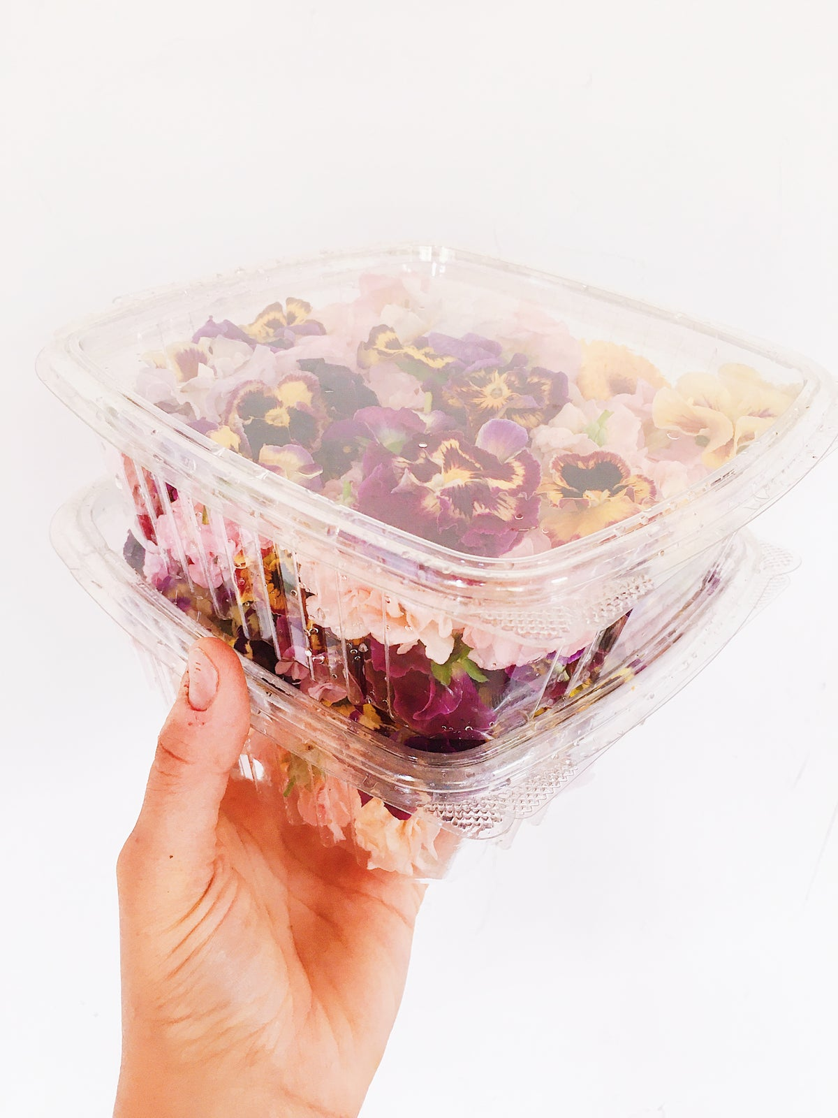 Image of Fresh Edible Flowers - Certified Naturally Grown