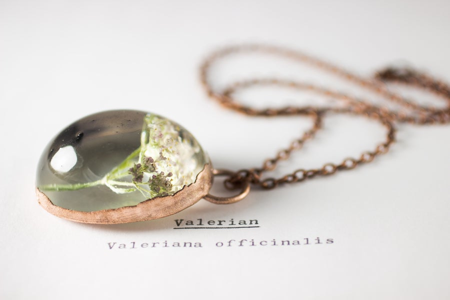 Image of Valerian (Valeriana officinalis) - Copper Plated Necklace #1