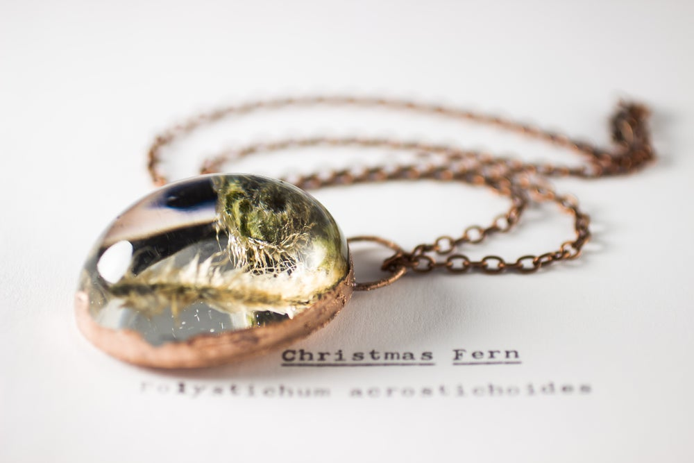 Image of Christmas Fern Fiddlehead (Polystichum acrostichoides) - Copper Plated Necklace #1