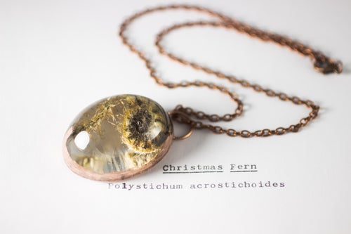 Image of Christmas Fern Fiddlehead (Polystichum acrostichoides) - Copper Plated Necklace #2