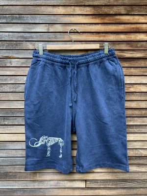 Image of Men's Wooly Mammoth Shorts