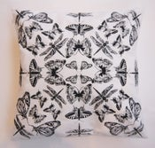 Image of Black and white insect cushion
