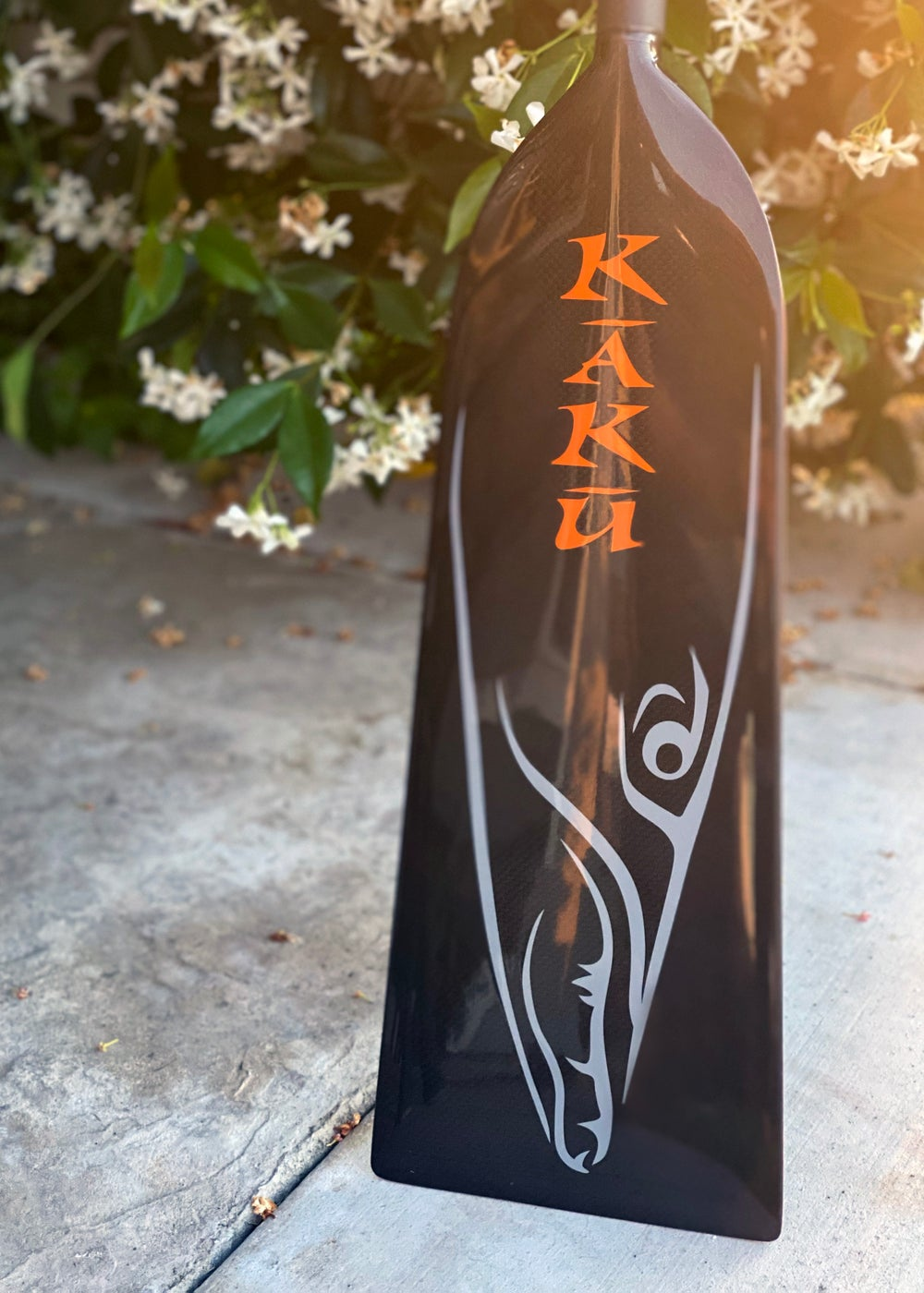 Image of Kaku Dragon Boat Paddle