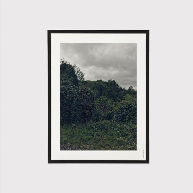 Image of Nature Machine