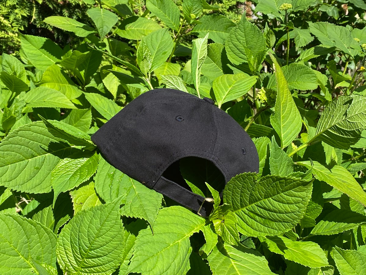 Image of N S R Embroidered Hat