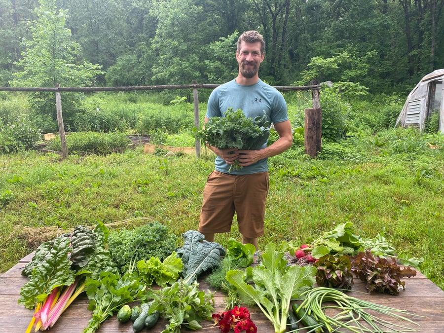 Image of Veggie and Herb CSA 2021