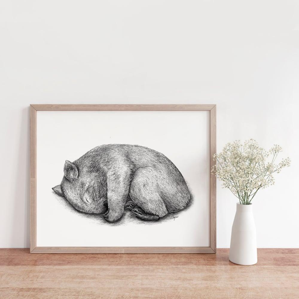 Image of Sleepy Wombat