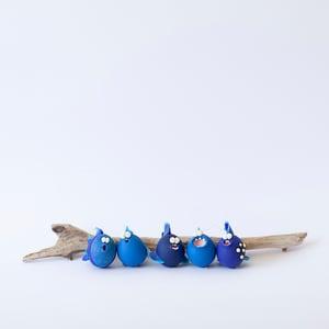 Image of Blue Piranhas