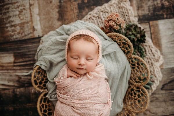 Image of Newborn Mini Sessions {$425}