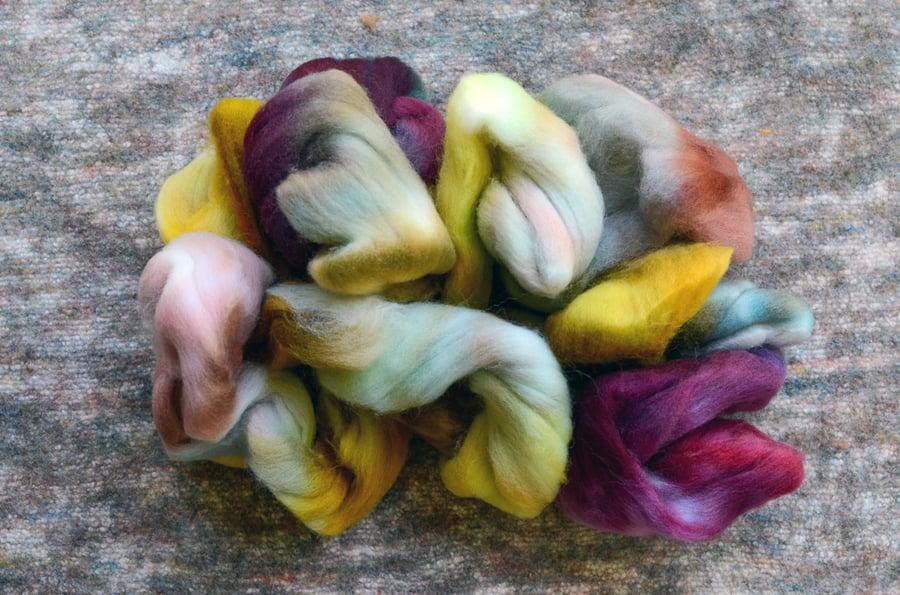 "Image of ""Buttah"" Hand-dyed Falkland Merino Spinning Fiber - 4 oz."