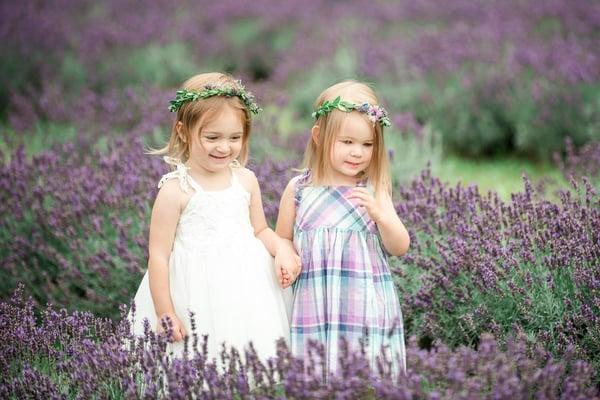 Image of Lavender Mini Session- July 21 (morning)
